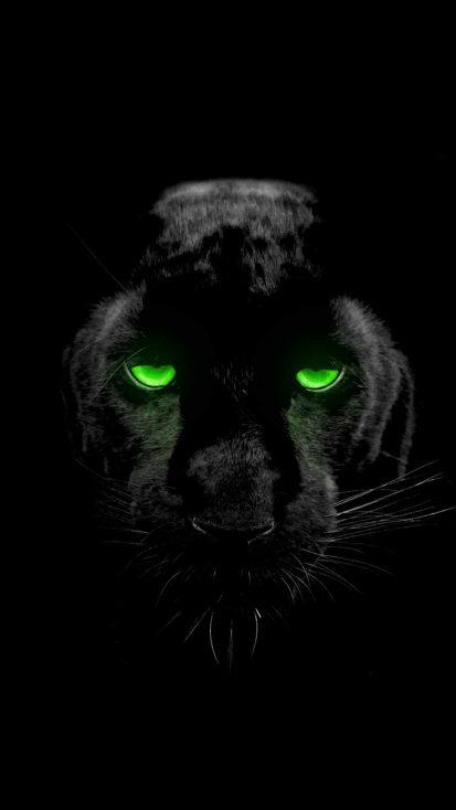 Black Panther Eyes