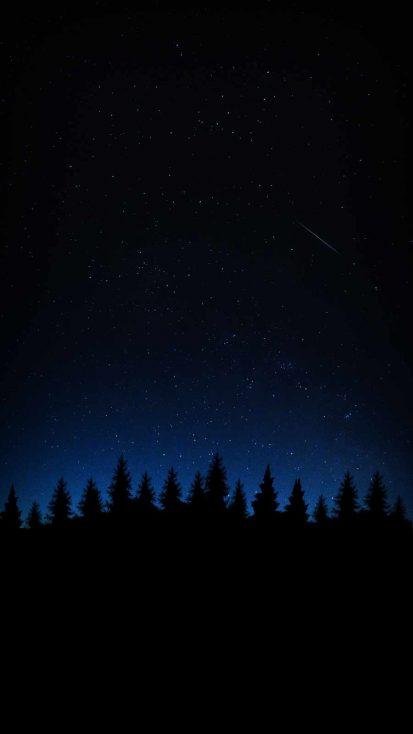 Night Forest Sky