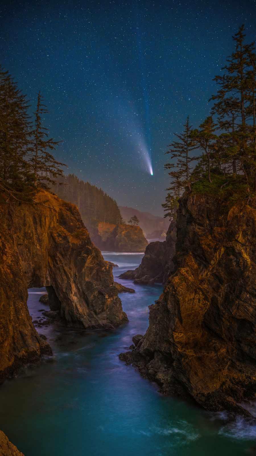 coast stars scenery oregon night trees