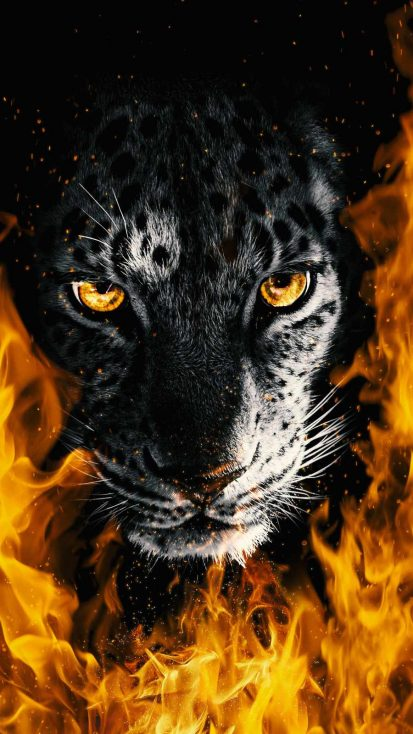 Fire Predator iPhone Wallpaper