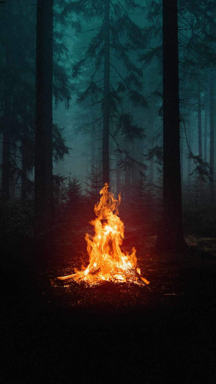 Forest Camping Fire iPhone Wallpaper