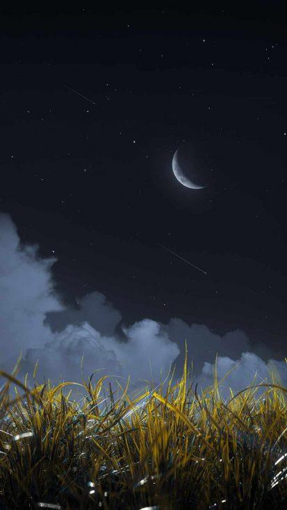Night Nature iPhone Wallpaper