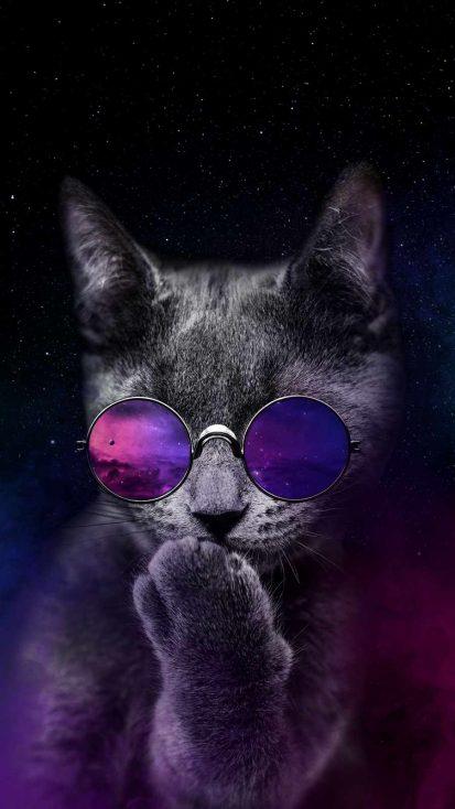 Space Cat iPhone Wallpaper